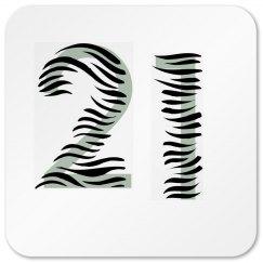 21 Coaster