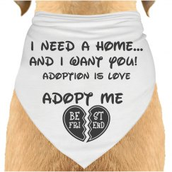 I need adopted! bandana