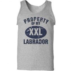 XXL Labrador