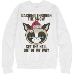 A Grumpy Cat Sleigh Ride