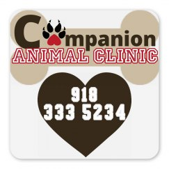 LMM #185 companion animal clinic magnet