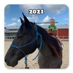 LMM#105 love my horse