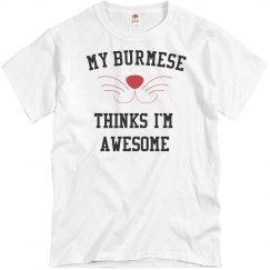My burmese loves me