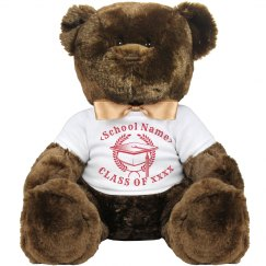 Personalized Class Of 2016 Bear