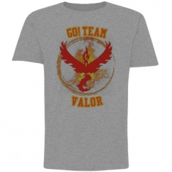 Go Team Valor Youth Tee