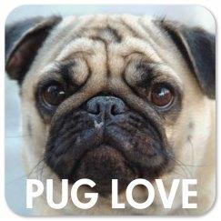 Pet Dog Photo Gift