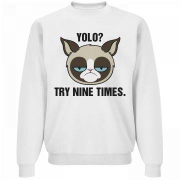 A Grumpy YOLO Cat