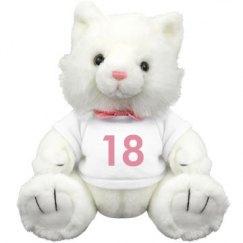 Pink 18  Plush Bear
