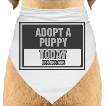 Adopt Today Sign