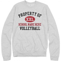 Volleyball School Colors