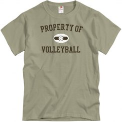 Property of volleyball