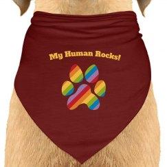 Dog Bandana rainbow burgandy
