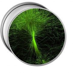 Tree of Life Tin