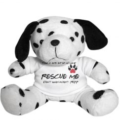 Rescue Dog Dalmation.