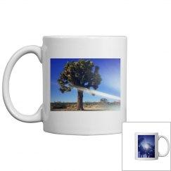 Joshua tree & Palm tree