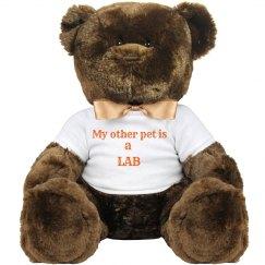 Teddy Lab