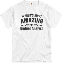 Amazing Budget Analyst