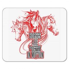 Horses _65