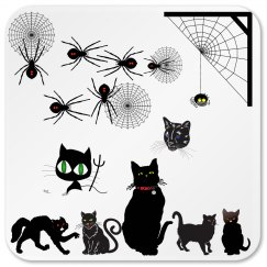 Scary Cats & Black Widows