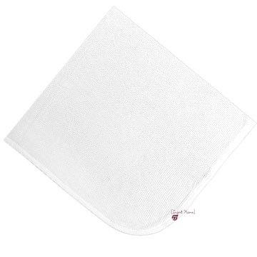 Custom Ladybug Blanket