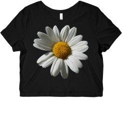 Dazed Daisy Floral