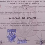 Diploma de Honor por Defensa de Tesis