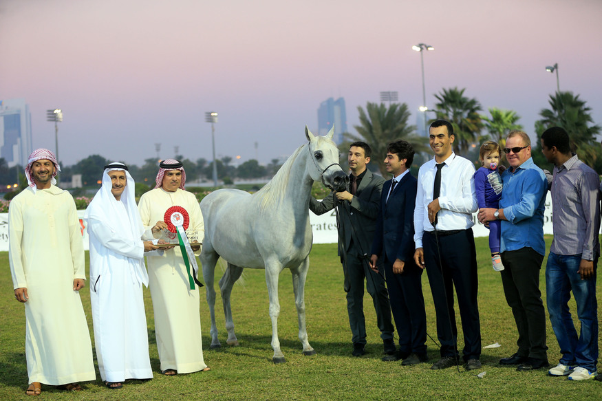 Emirates Arabian Horse Breeders 2017