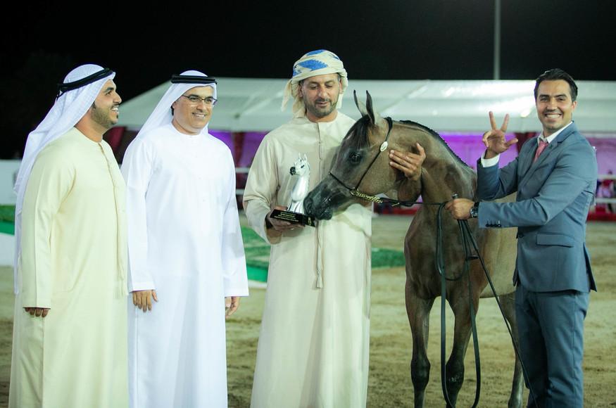 Fujairah Arabian Horse Show 2018