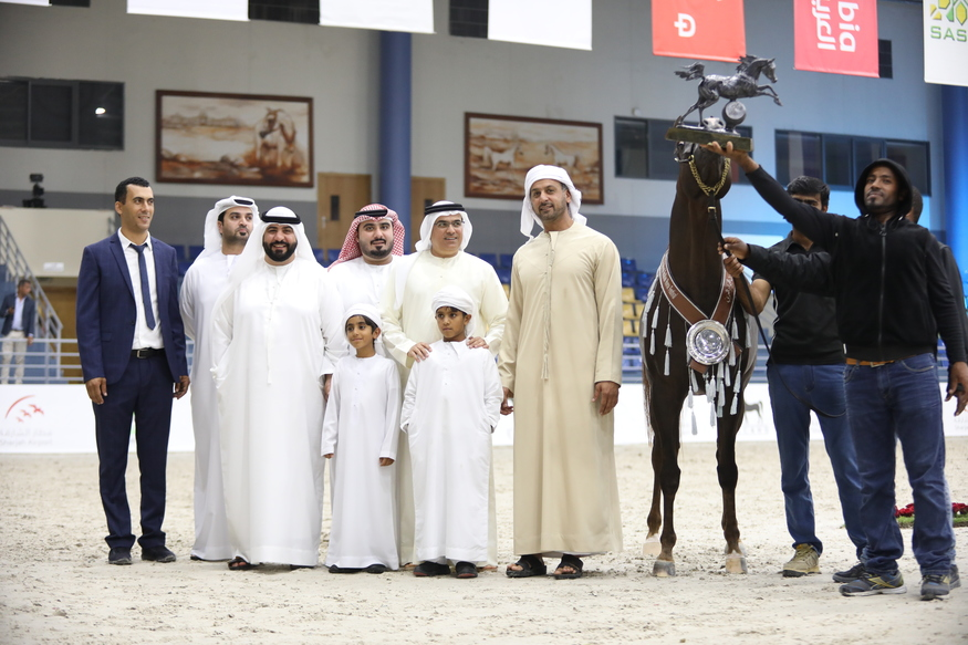 Sharjah International Arabian horse Show 2019