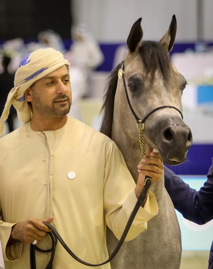 Dubai International Arabian Horse Championship 2019