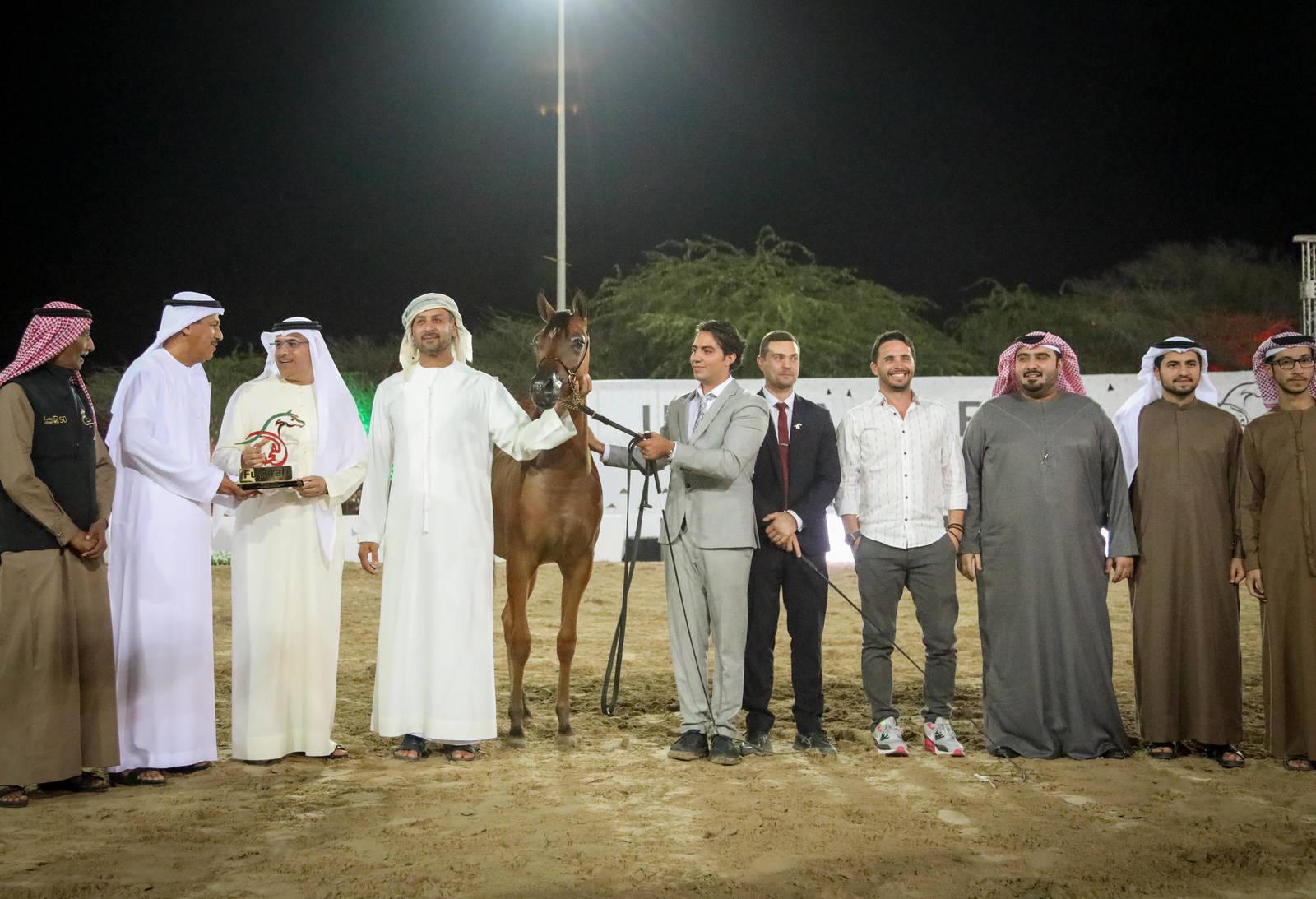 Fujairah Arabian Horse Show 2019