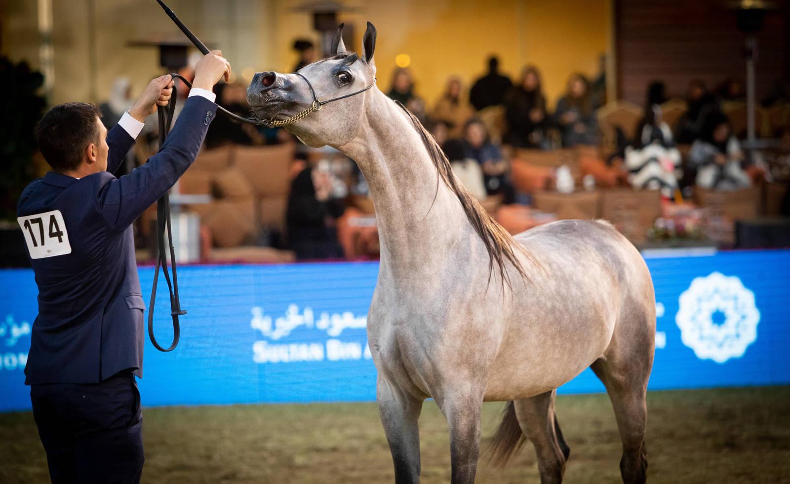 PSAIAHF Al Khalediah Show 2020