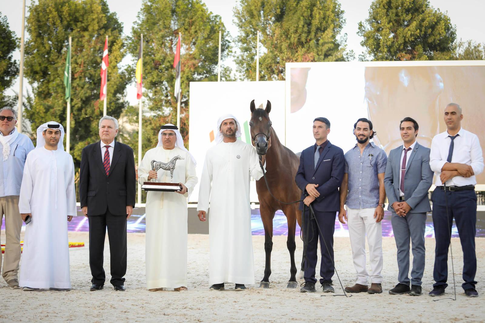 Abu Dhabi International Arabian Horse Championship 2020