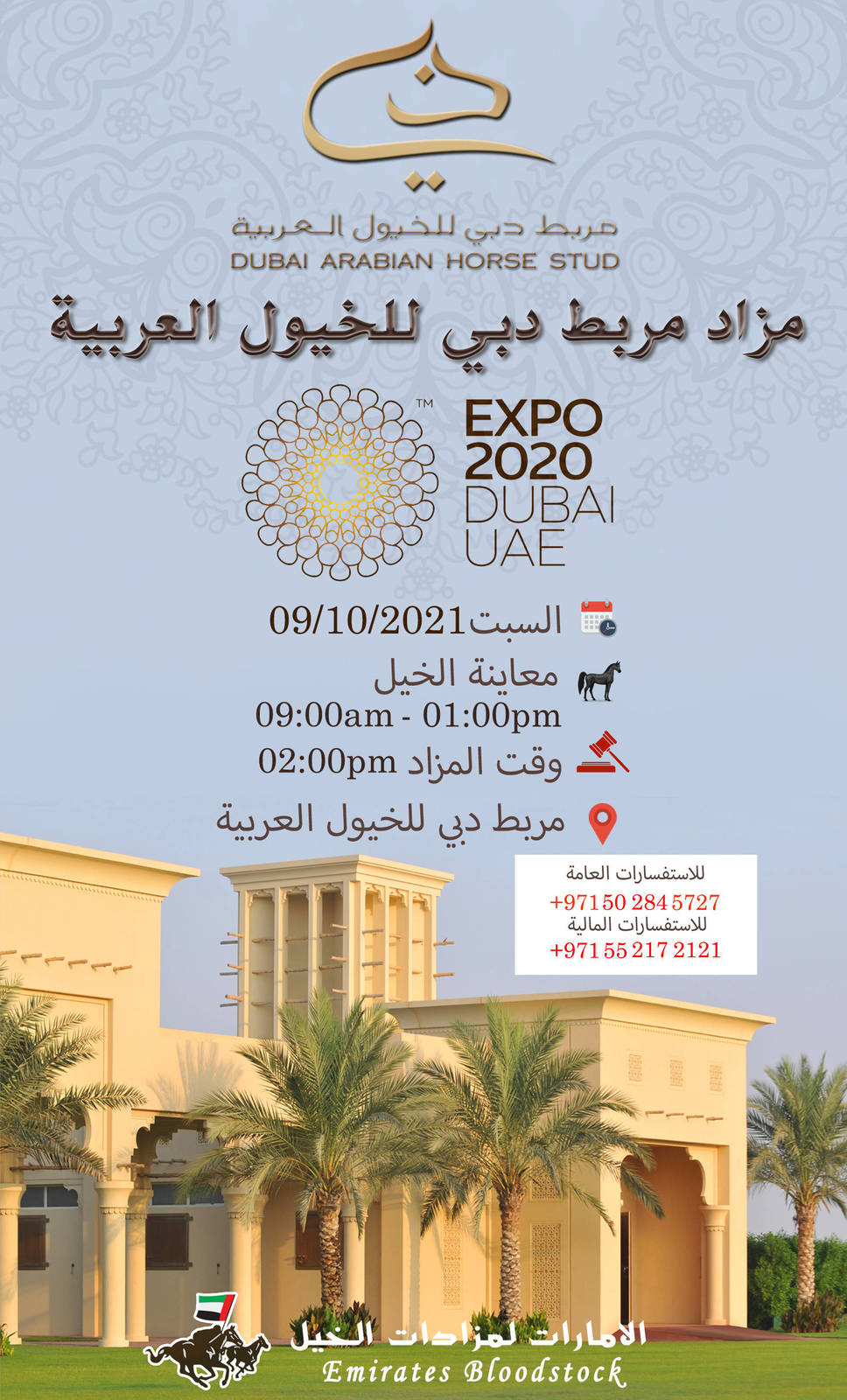 Dubai Stud Auction - Expo 2020