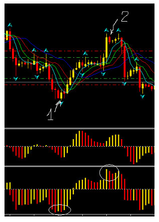 Trader-Info - Forex Trading - Stock Market Trading - Forex Scalping Systems - Forex Automated Logo