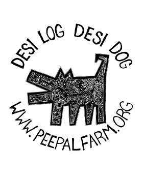 Desi Log Desi Dog Sticker #2