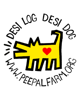 Desi Log Desi Dog Sticker