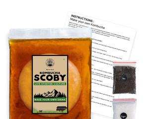 Kombucha SCOBY and Starter Tea (400ml)