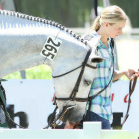 Equestrian Aid Foundation Announces Its New Horse Show Program: Show You Care