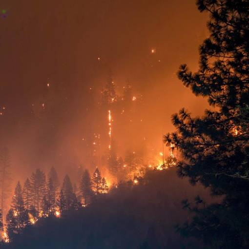 California Fire Season Prompts Grant from EAF's Disaster Relief Fund