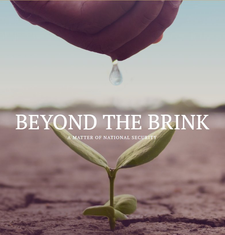 movie poster for Beyond the Brink