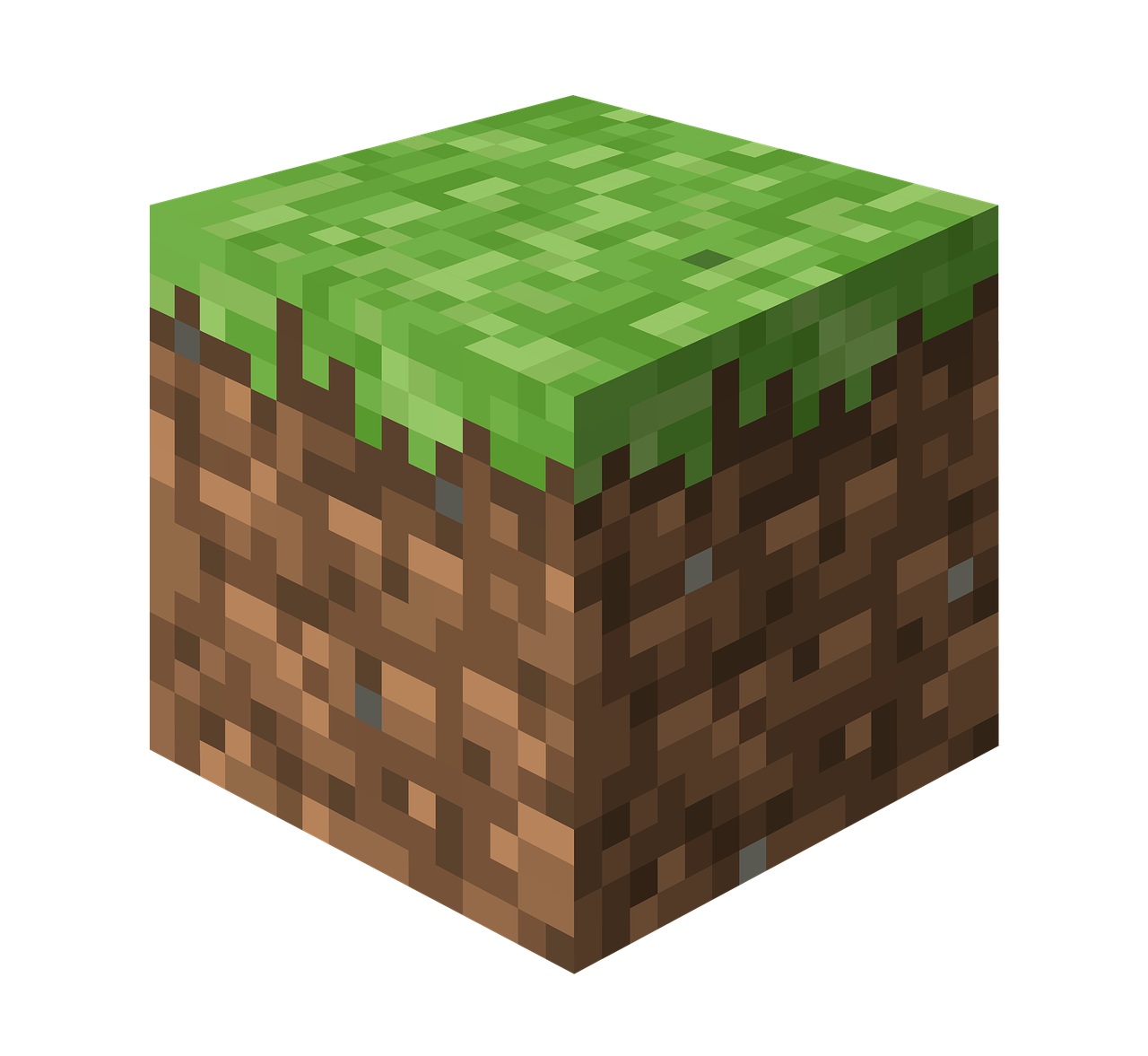 A Minecraft dirt block