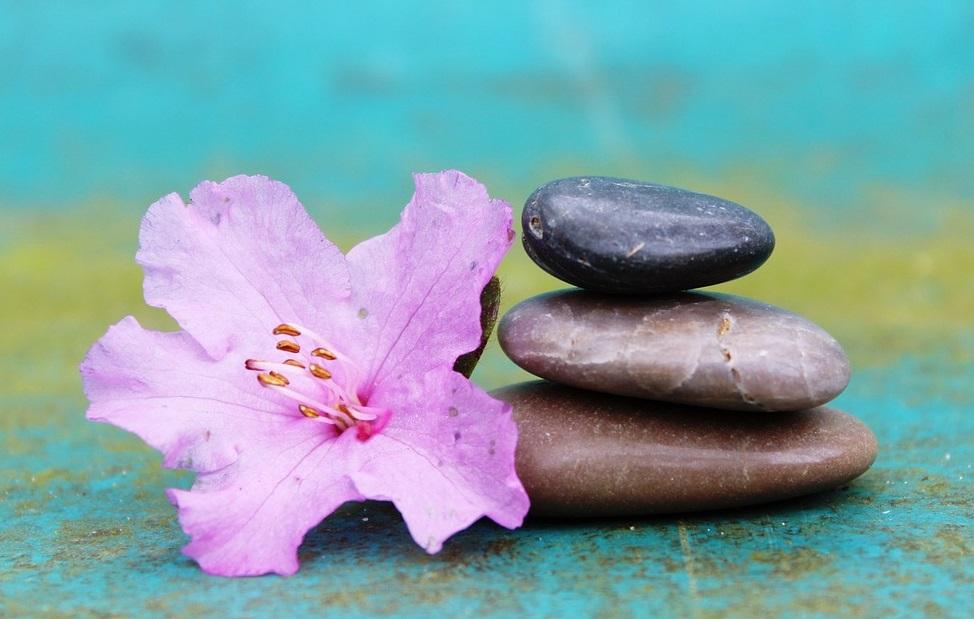 Azalea and stones