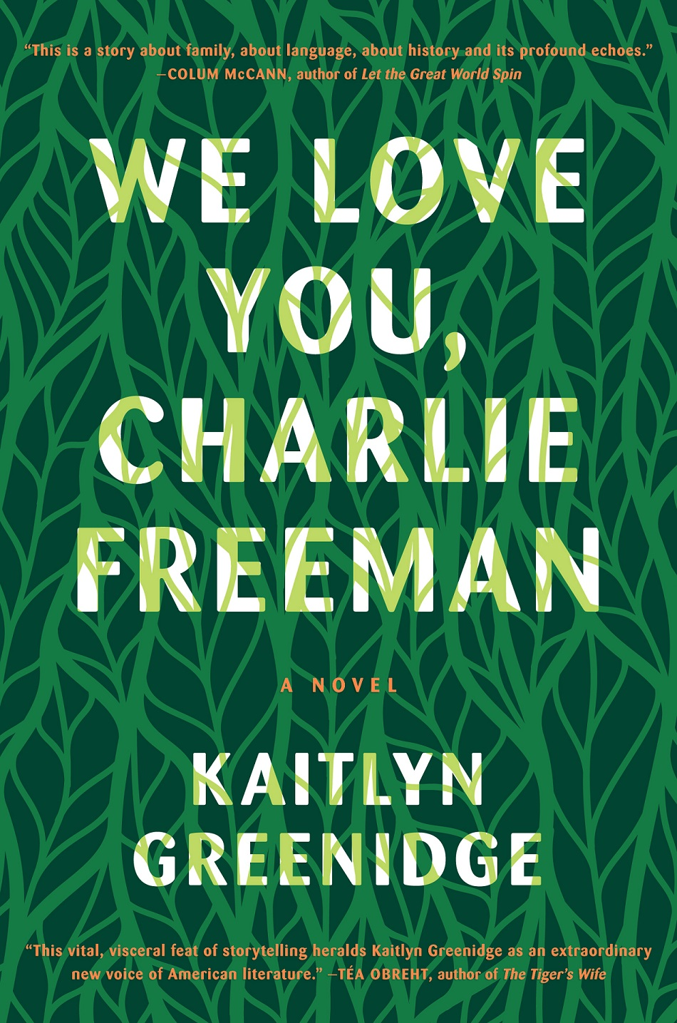 cover image for we love you, charlie freeman