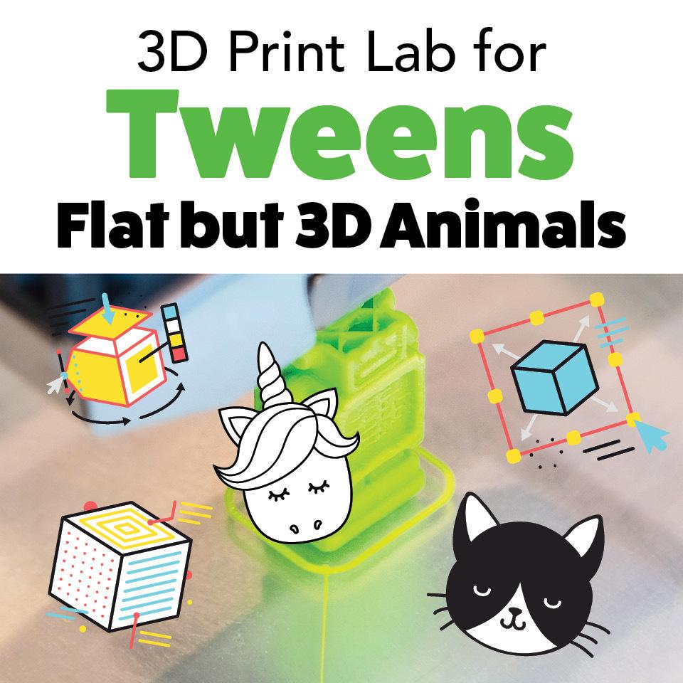 3D Print Lab for Tweens: Flat but 3D Animals