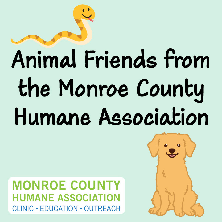Animal Friends from the Monroe County Humane Association