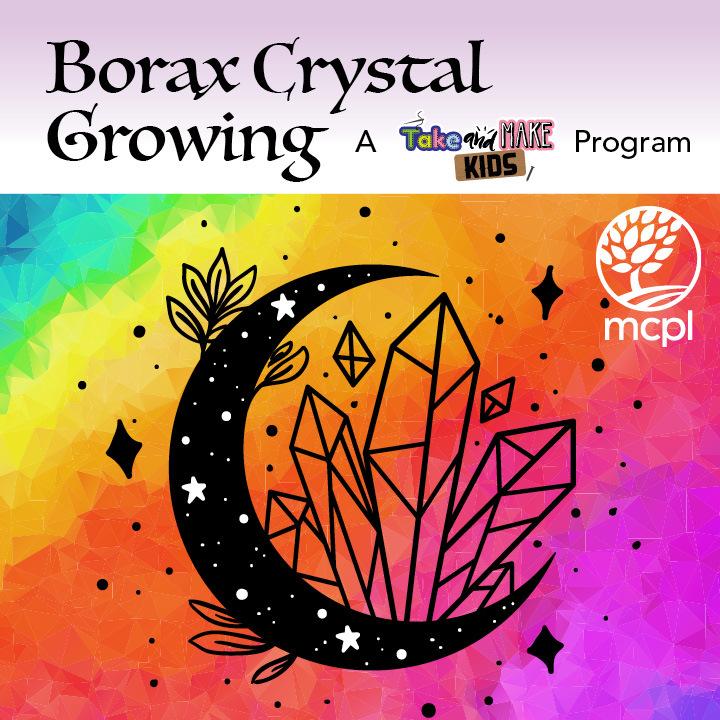 Borax Crystal Growing: A Take and Make Kids Program