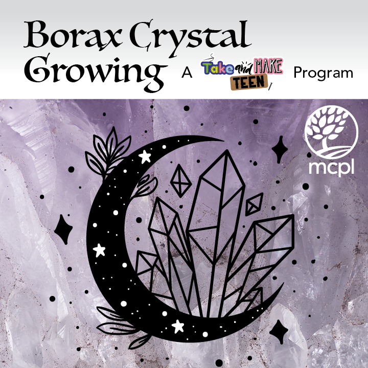 Borax Crystal Growing: A Take & Make Teen Program
