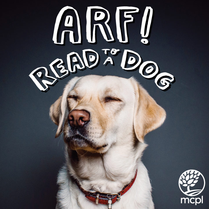 Read to a Dog image