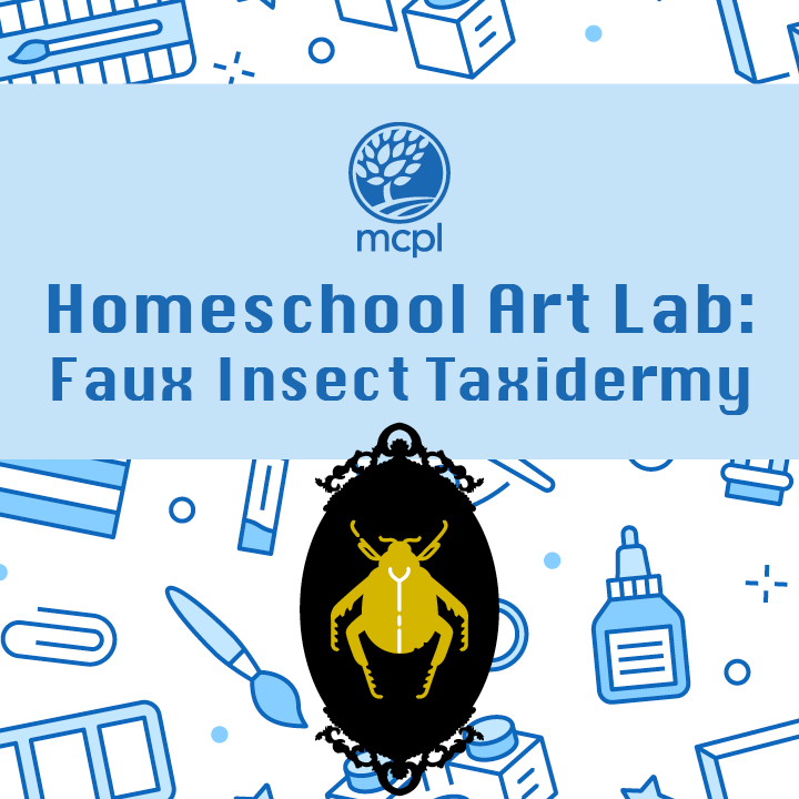 Homeschool Art Lab: Faux Insect Taxidermy